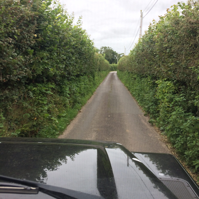 Hardown Hill Lanes